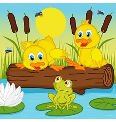 ducklings looking at frog vector image