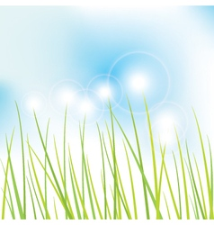 Grass - background vector image vector image