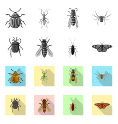 insect and fly sign vector image