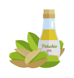 Pistachio oil in flat design vector