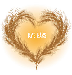 Rye ears heart isolated vector
