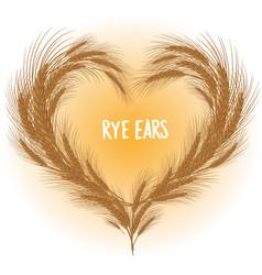 rye ears heart isolated vector image