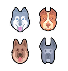 Set dogs for vector
