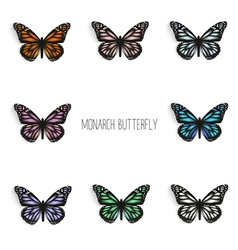Set of realistic monarch butterflies in different vector