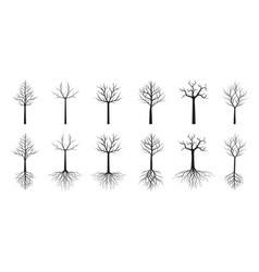 Set trees and green leaves vector