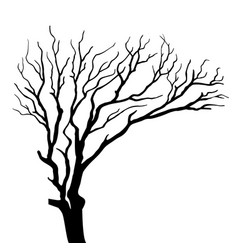 Silhouette on tree isolated vector