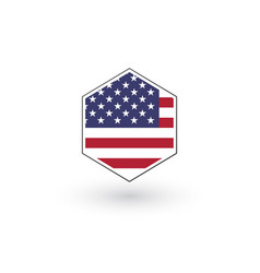 usa flag hexagon flat icon button isolated on vector image