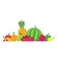 group fruits vector image vector image