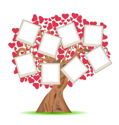 heart tree with picture frames vector image