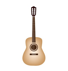 A Beautiful Classical Guitar on White Background vector image vector image