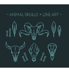 outline icon skull animals vector image vector image