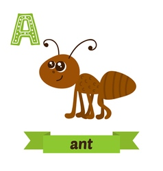 Ant A letter Cute children animal alphabet in vector