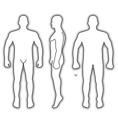 Fashion man body full length bald template vector