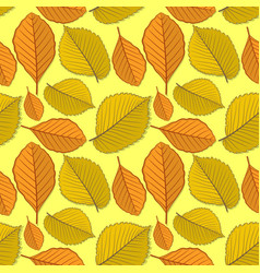 Seamless pattern with elm and beech autumn leaves vector