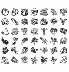 set icons vegetables black vector image