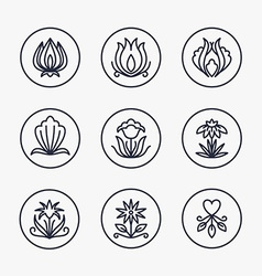 Set of Thin Line Floral Design Elements for Logos vector