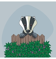 Cute Badger vector image vector image
