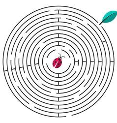 Maze Circle Maze with Ladybug and Leaf on W vector image vector image