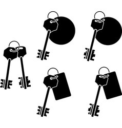 set of keys sixth variant vector image vector image
