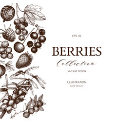 card with hand drawn berries vector image