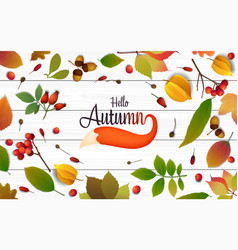 colorful autumn leaves and fox tail 03 vector image