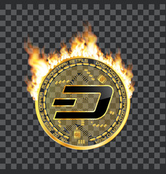 crypto currency dash golden symbol on fire vector image