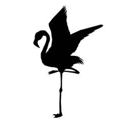 file of flamingo vector image