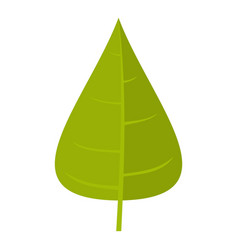 Green poplar leaf icon isolated vector