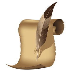 Parchment and feather vector image