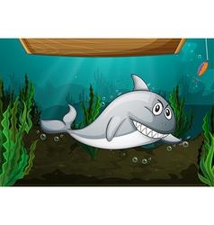 Shark fish and a bench vector image