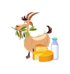 Goat Eating A Branch And Set Of Cheese And Milk vector image vector image