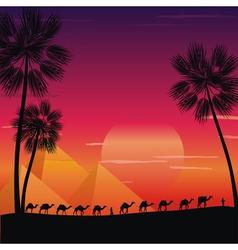 caravan of camels vector image