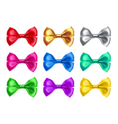 fashionable bow ties from satin material vector image