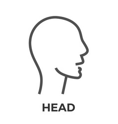 head thin line icon vector image