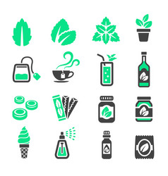 mint icon vector image