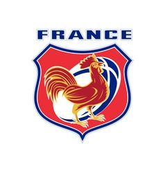 Rugby rooster mascot france vector