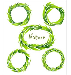 set of wreaths green stylized leaves vector image