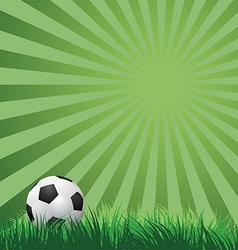 Soccer ball on green grass vector