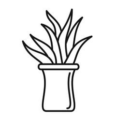 Succulent pot icon outline style vector