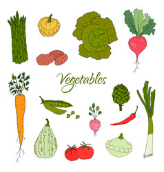 Hand drawn doodle vegetables icons isolated set vector