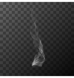 Realistic transparent white smoke object vector image