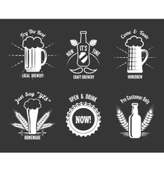 Beer craft labels vector image vector image