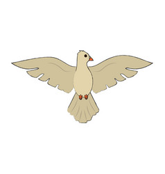 dove bird cartoon vector image
