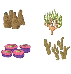 hand drawn coral design vector image vector image