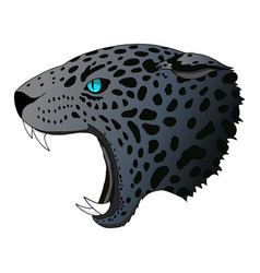 angry panther cougar portrait jaguar vector image