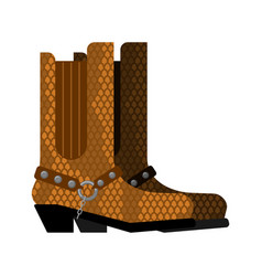 cowboy boots made python leather australia shoes vector image