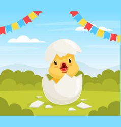 cute duckling bahatching from egg on beautiful vector image