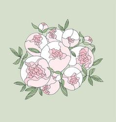 elegant modern peony flower bouquet vector image