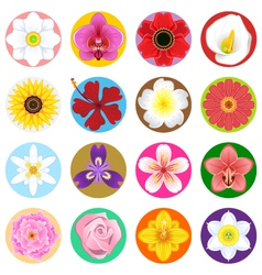 Flower Collection Set vector