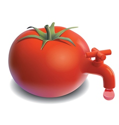 Fresh tomato tap juice drops vector